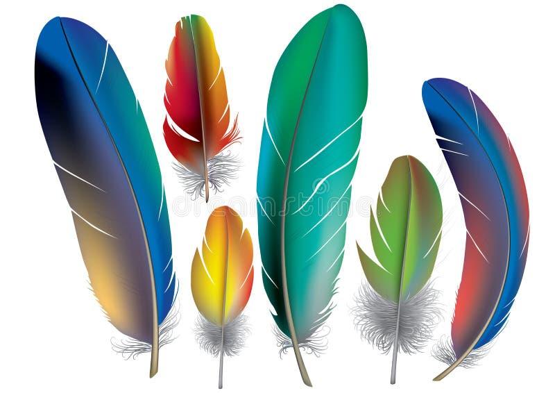 Plumas coloreadas stock de ilustración