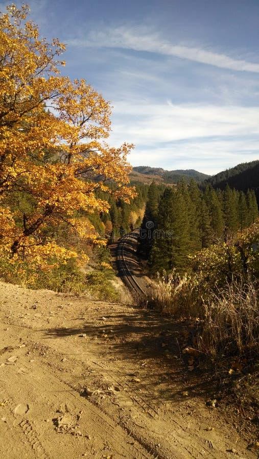 Plumas County im Fall lizenzfreie stockbilder