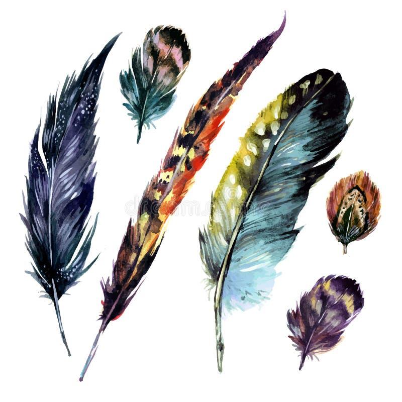 Plumas de la acuarela fijadas ilustración del vector