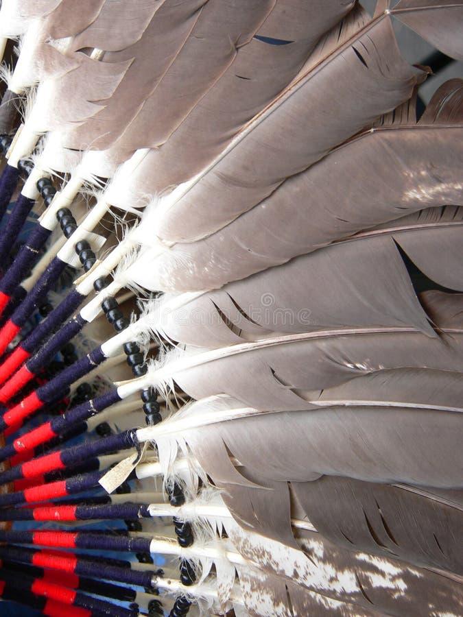 Plumas del traje de la danza fotografía de archivo libre de regalías