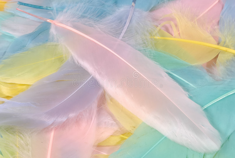 Plumas en colores pastel imágenes de archivo libres de regalías