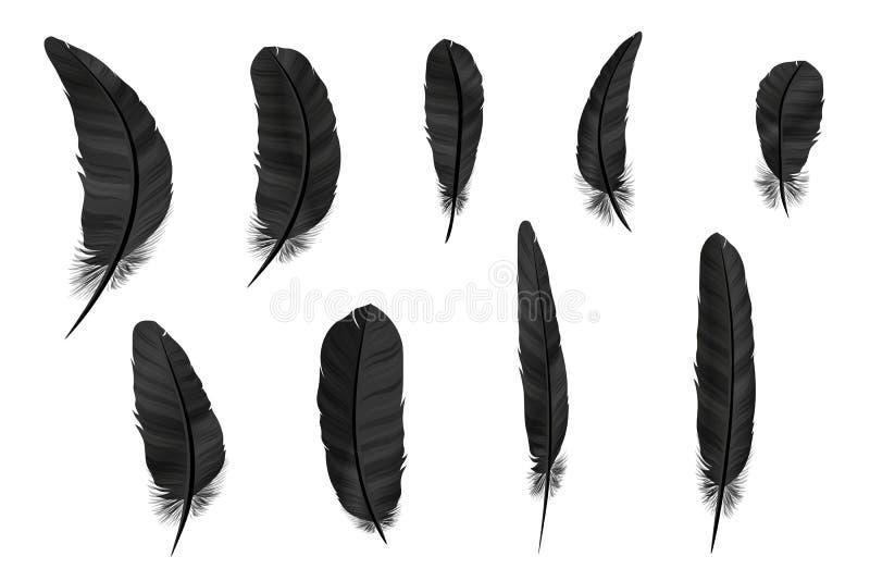 Plumas fijadas en un estilo 3d Plumas de los iconos aisladas en un fondo ligero Colección de siluetas de plumas oscuras Simp libre illustration