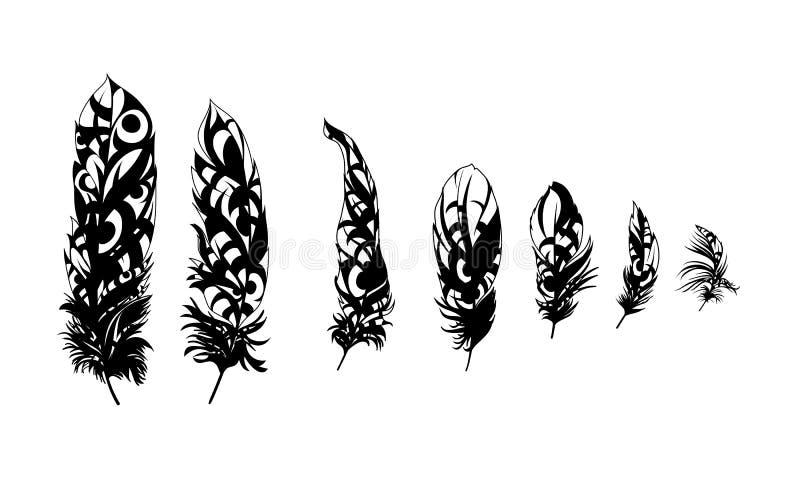 Plumas negras ilustración del vector