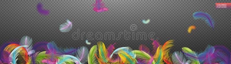 Plumas realistas giradas que caen multicoloras aisladas en un fondo transparente Diseño lindo ligero de las plumas libre illustration