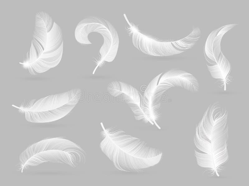 Plumas realistas Pluma que cae del pájaro blanco aislada en la colección blanca del vector del fondo stock de ilustración