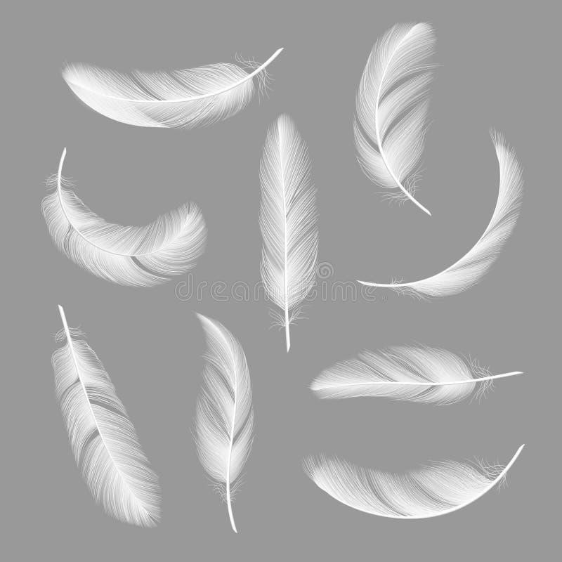 Plumas realistas Vector blanco ingrávido peludo de los objetos del cisne que vuela aislado en fondo oscuro stock de ilustración