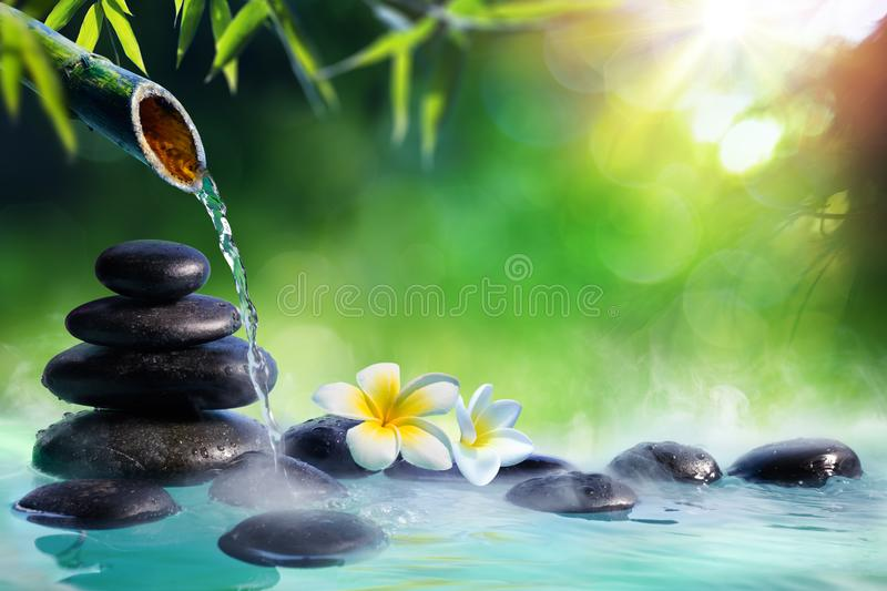 Plumeria Flowers In Japanese Fountain With Massage Stones And Bamboo royalty free stock images