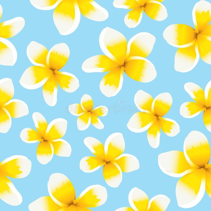 Plumeria inconsútil del amarillo del modelo del fondo floral libre illustration