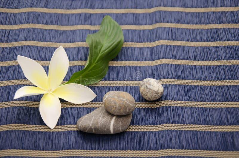 Download Plumeria kwiat zdjęcie stock. Obraz złożonej z liść, tło - 53788776