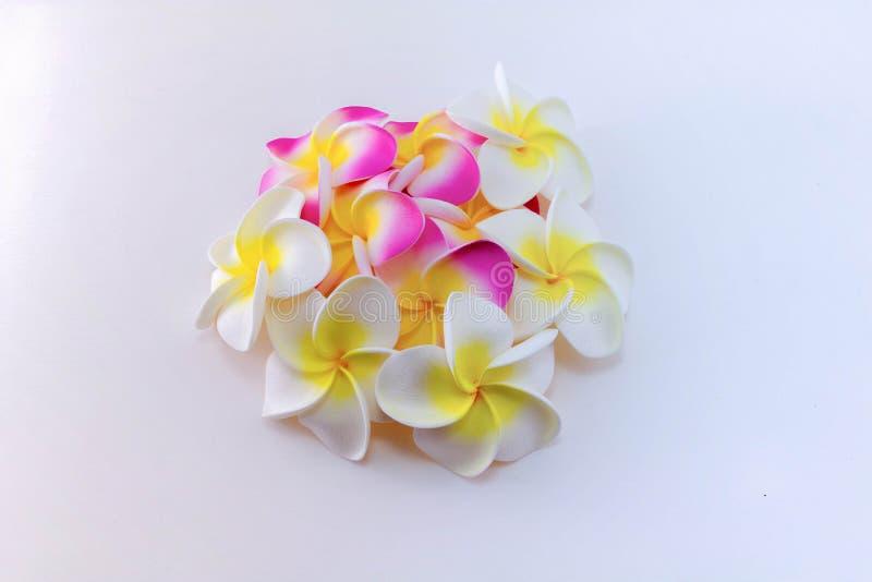 Download Plumeria kwiaty zdjęcie stock. Obraz złożonej z zdrój - 57663684