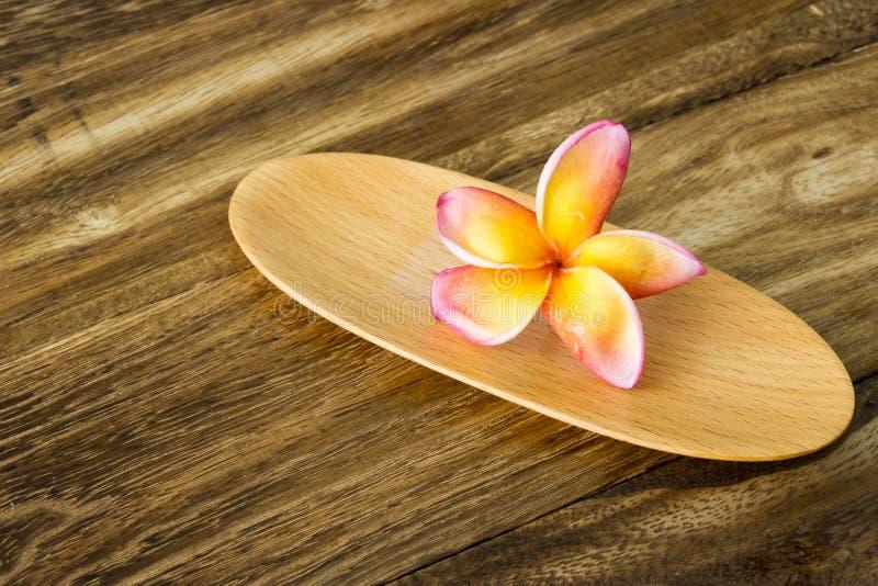 Plumeria na bandeja de madeira fotos de stock