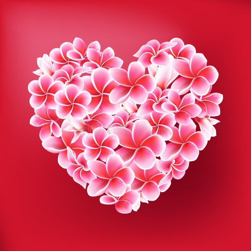 Plumeria o illustrazione del cuore di vettore dei fiori del frangipane su rosso illustrazione di stock