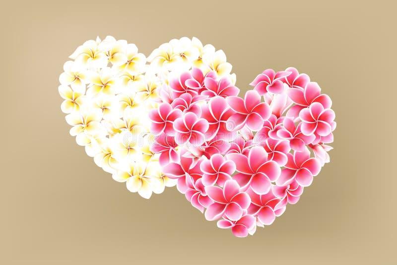 Plumeria ou ilustração do coração do vetor das flores do Frangipani no fundo do café