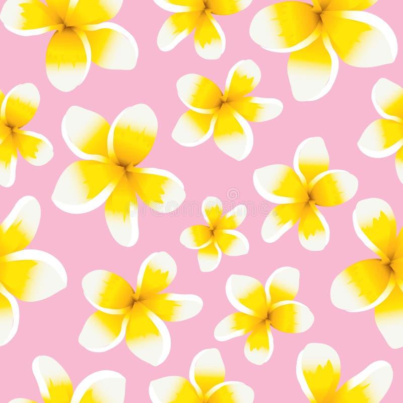 Plumeria sem emenda do amarelo do teste padrão do fundo floral ilustração royalty free