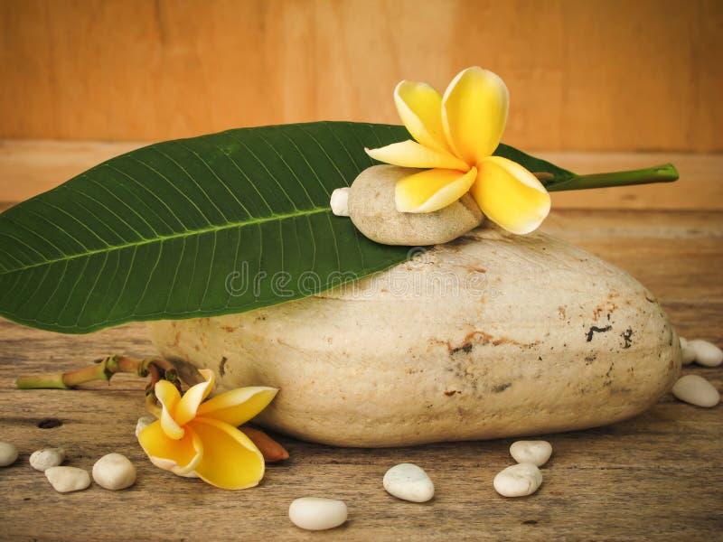 Plumeria sur en bois en pierre photo libre de droits