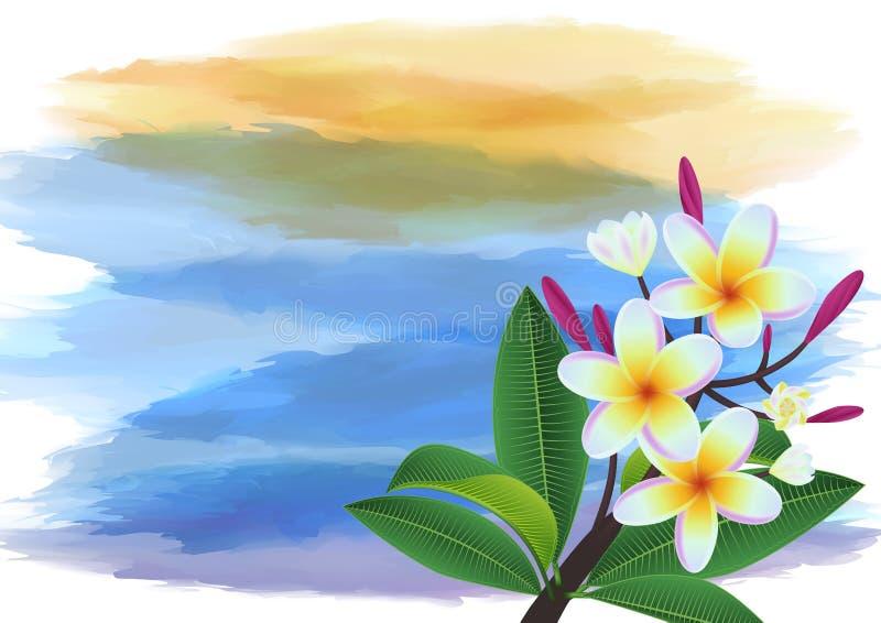 Plumeria tropikalny tło ilustracji