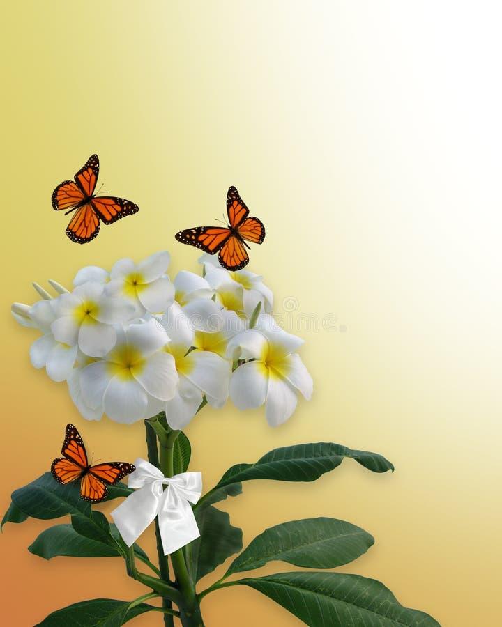 Plumeria y mariposas stock de ilustración