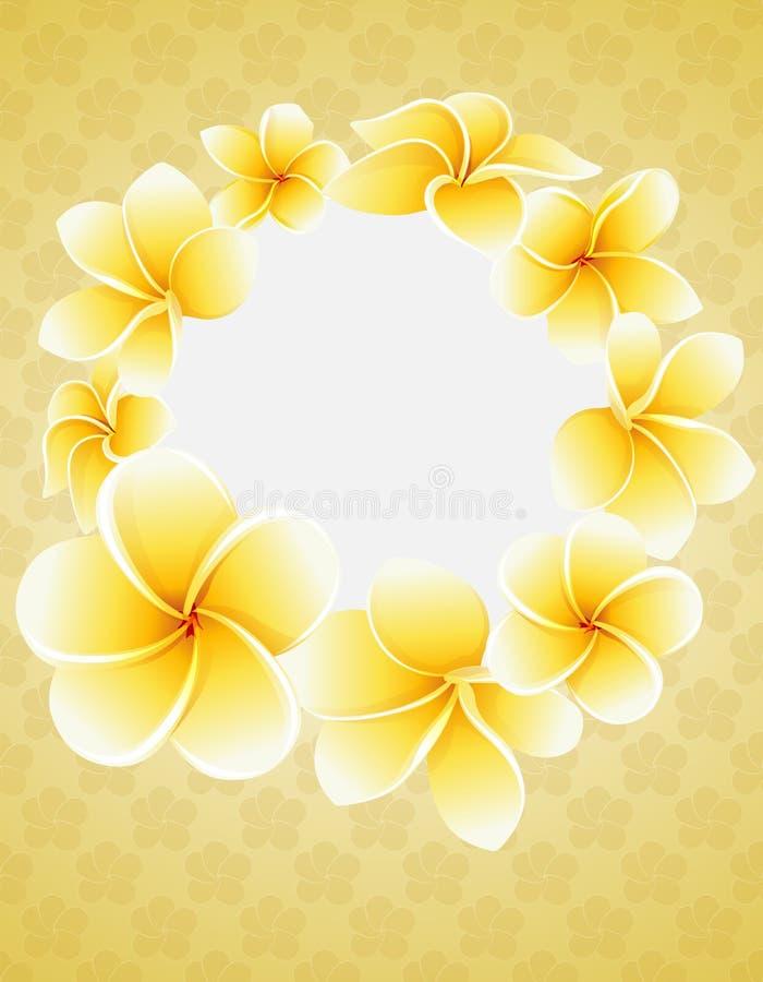 Plumeriablomningblommor omkring av den runda ramen Tropisk blommavykort royaltyfri illustrationer