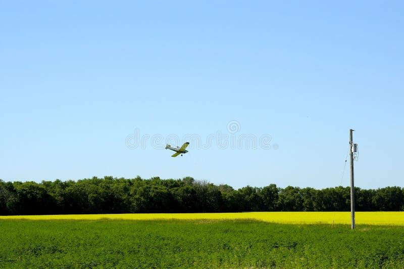 Download Plumero de la cosecha foto de archivo. Imagen de vuelo - 177960