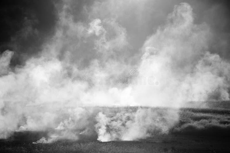 Plumes de vapeur se levant au-dessus de chaud photographie stock libre de droits
