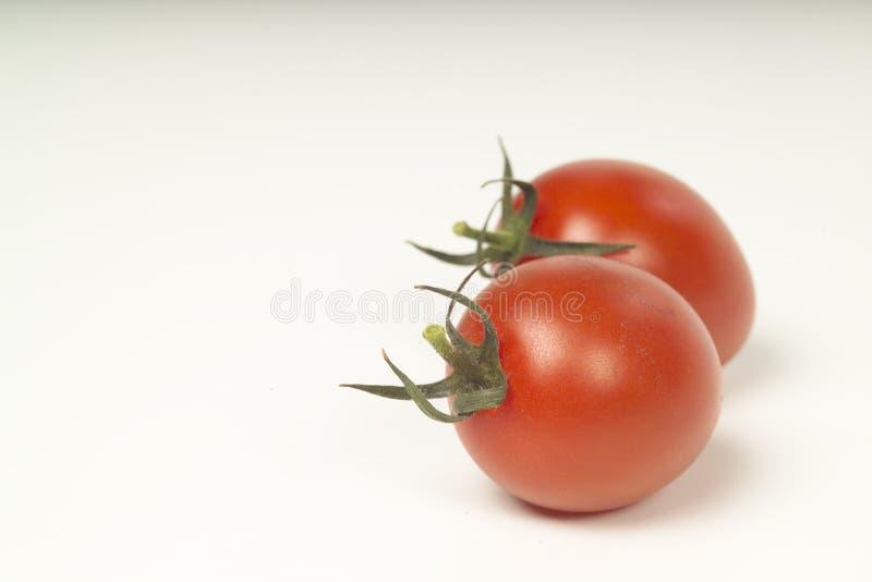 Plump tomatoes royalty free stock photos