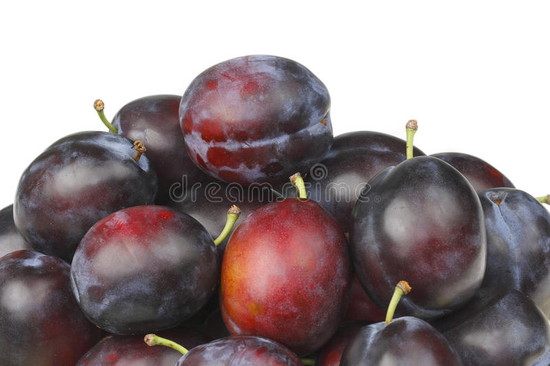 Download Plums Royalty Free Stock Photography - Image: 10849787