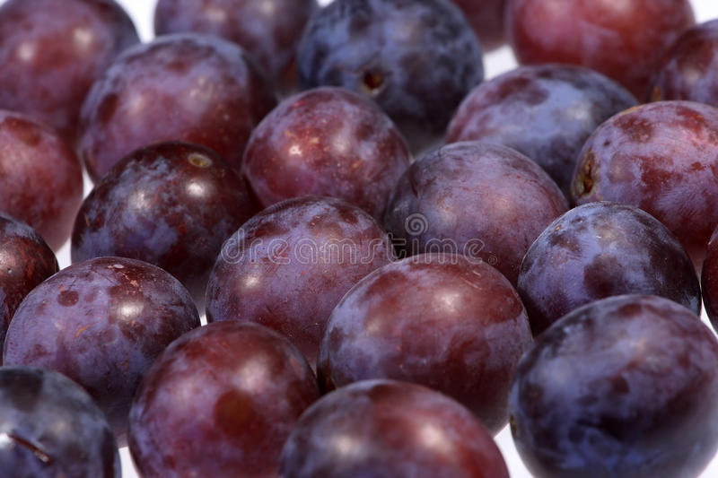 Download Plums stock image. Image of juice, dirty, diet, delicious - 10918435
