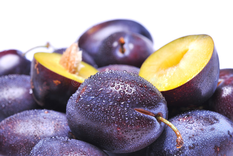 Download Plums stock photo. Image of agriculture, fruit, summer - 6290188