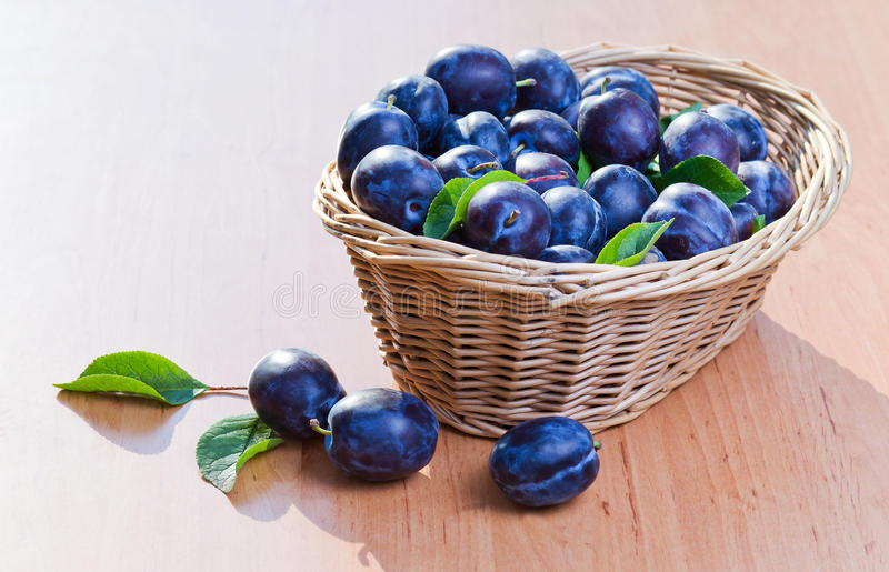 Download Plums in basket stock image. Image of heap, organic, agriculture - 26032701