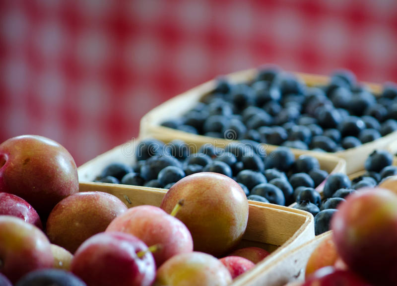 Plums and blueberries royalty free stock photos