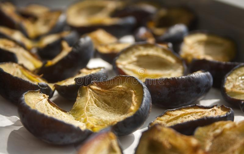 Plums fruits are sun dried. Prune. Plums without kernels. Sun drying at home stock photo