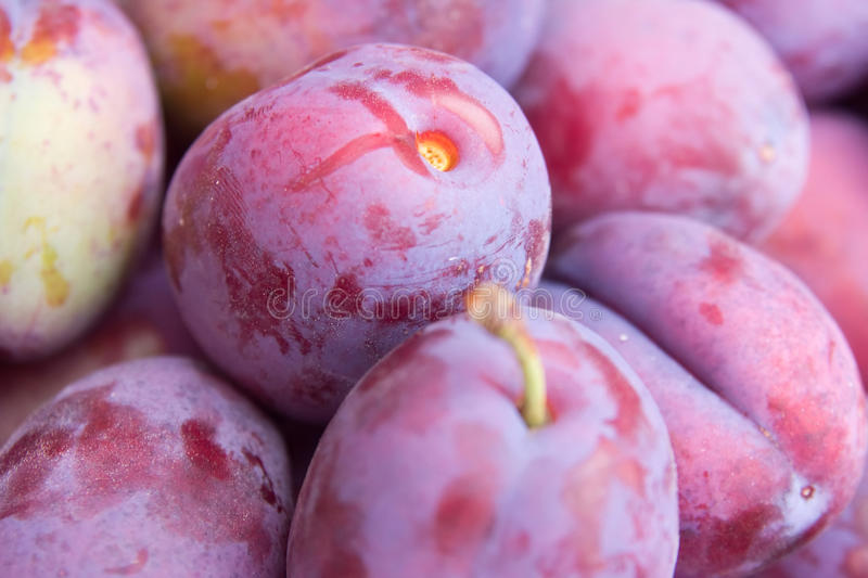 Plums pile