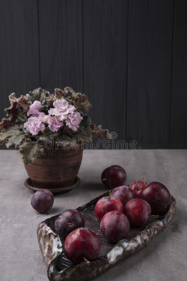 Plums on the table stock images