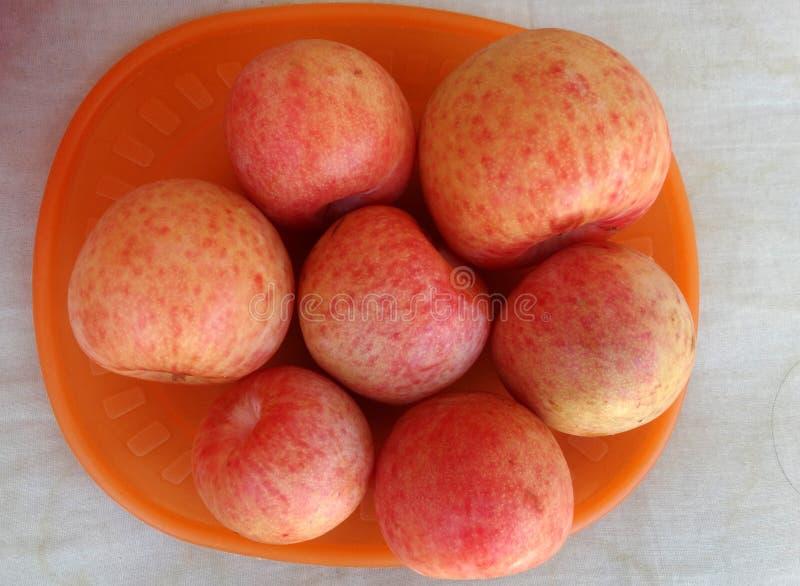 Pluot Dapple dandy, Prunus 'Dapple dandy' zdjęcia royalty free