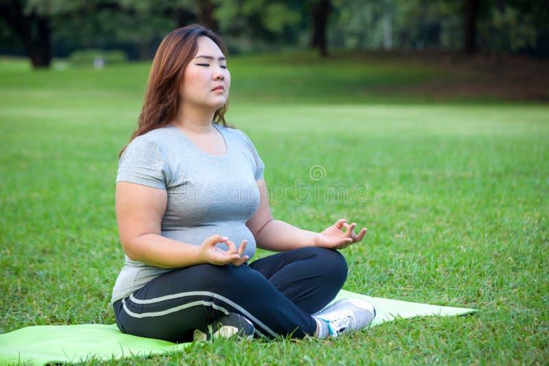 Plus groottevrouw het praktizeren yoga op groen gras stock afbeelding