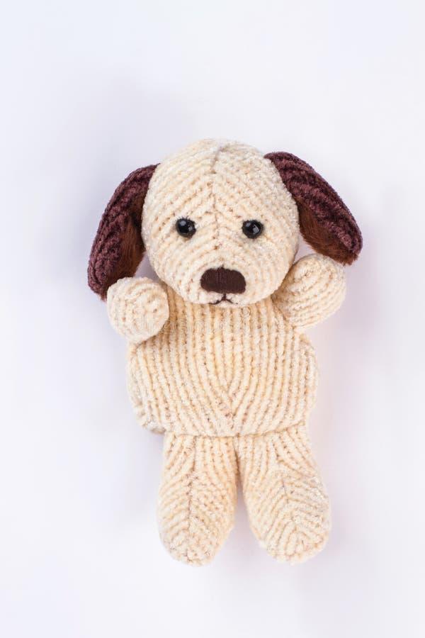Plush dog toy on a white background. royalty free stock image