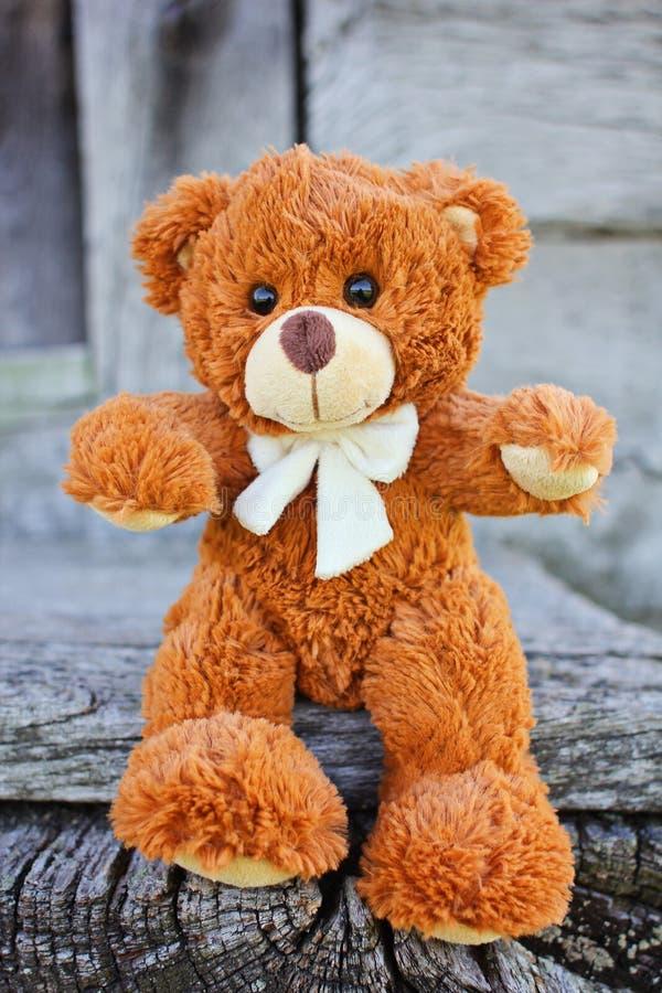 Plush Teddy Bear Toy Stock Photo