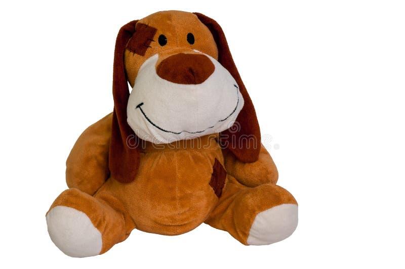 Plush toy dog isolated stock images