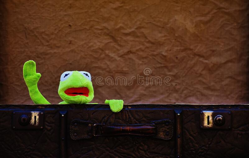 Plush toy in suitcase stock photography