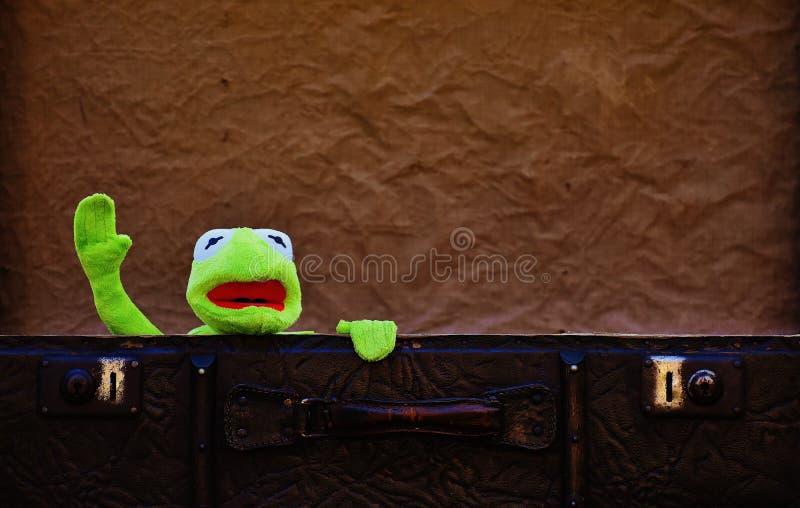 Plush Toy In Suitcase Free Public Domain Cc0 Image