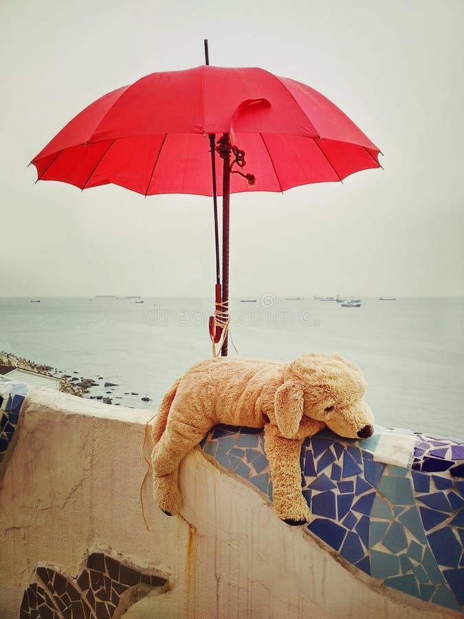 Plushie somnolent de chien photos libres de droits