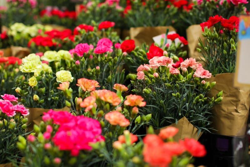 Plusieurs bouquets d'oeillet prêts pour la vente sur un marché de fleur de rue image stock