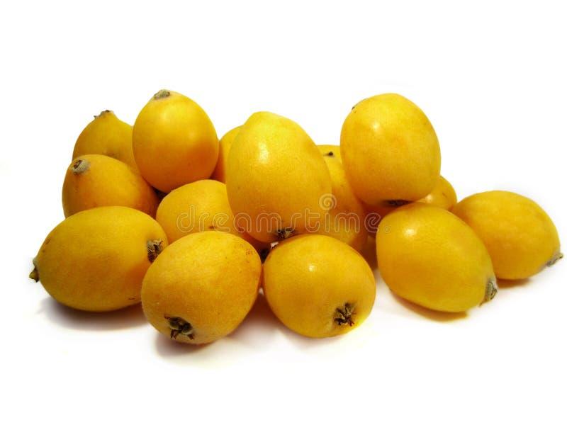 Plusieurs fruits de loquat images stock
