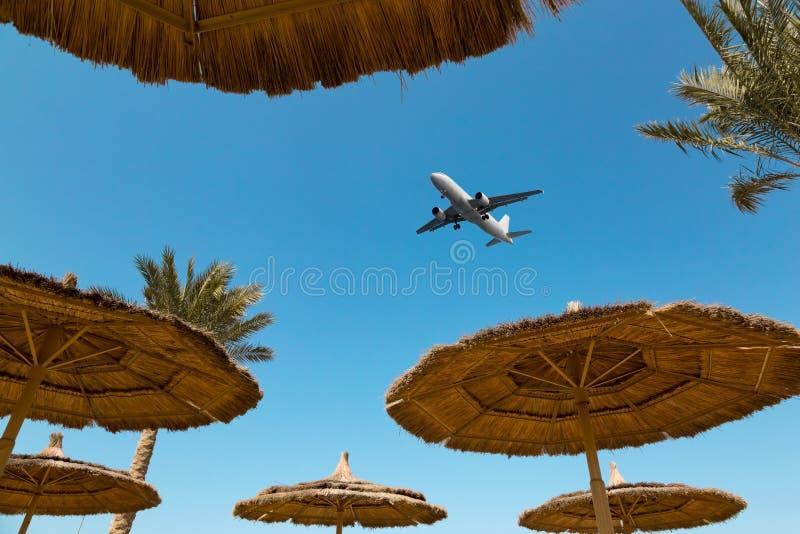 Plusieurs parapluies de plage de paille et un avion photographie stock libre de droits