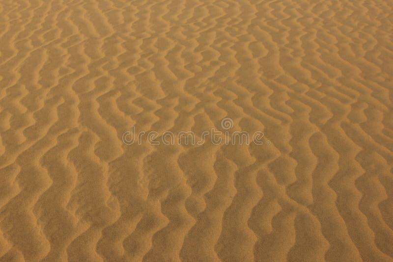 Pluskocz?cy piasek w pustyni obraz stock