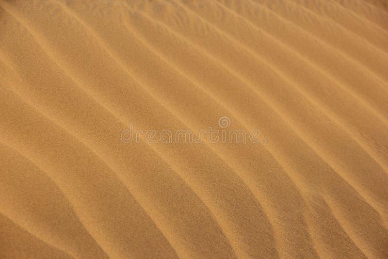 Pluskocz?cy piasek w pustyni fotografia stock