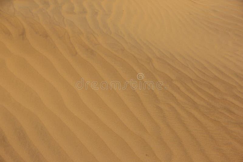 Pluskocz?cy piasek w pustyni zdjęcie royalty free