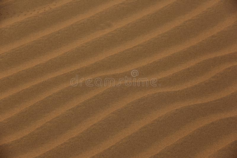 Pluskocz?cy piasek w pustyni zdjęcie stock
