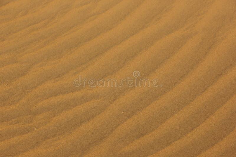 Pluskocz?cy piasek w pustyni fotografia royalty free