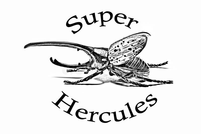 Pluskwa Super Hercules i podpis zdjęcie royalty free